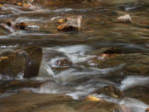 Waterfalls, Glens Natural Area, Ricketts Glen State Park, PA, United States, © 2017 Bob Hahn
