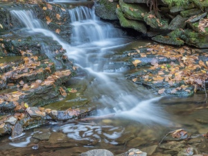 Waterfalls, Glens Natural Area, Ricketts Glen State Park, PA, United States, © 2017 Bob Hahn